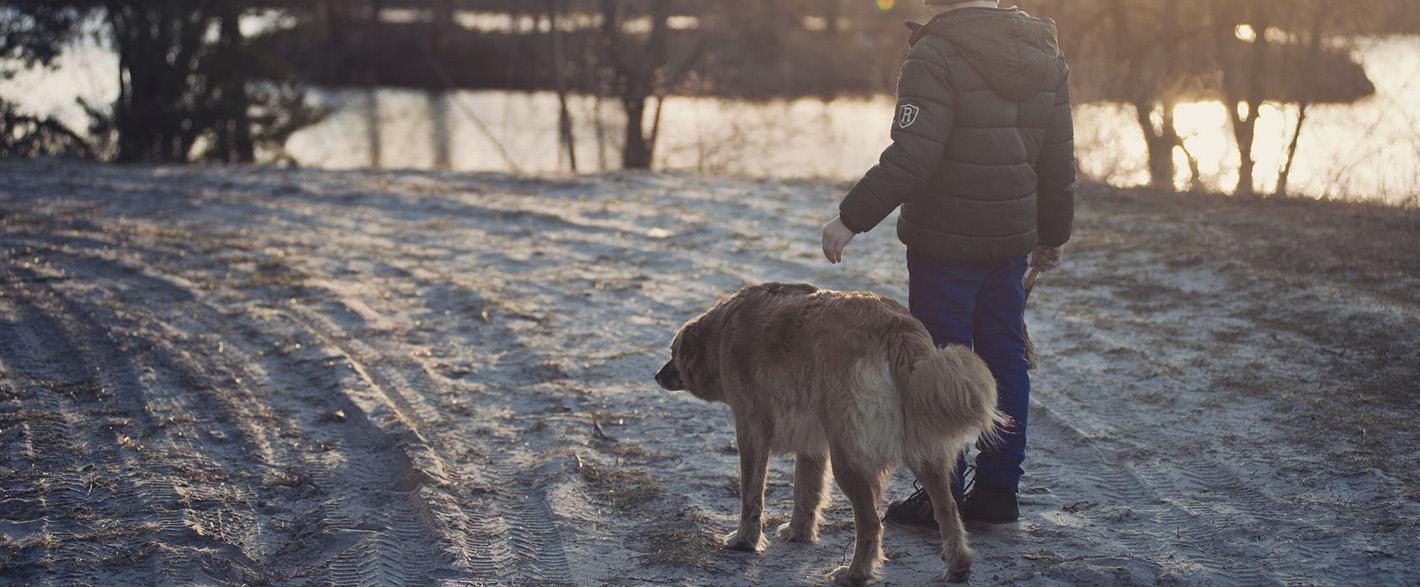 Pojke med hund i skogen