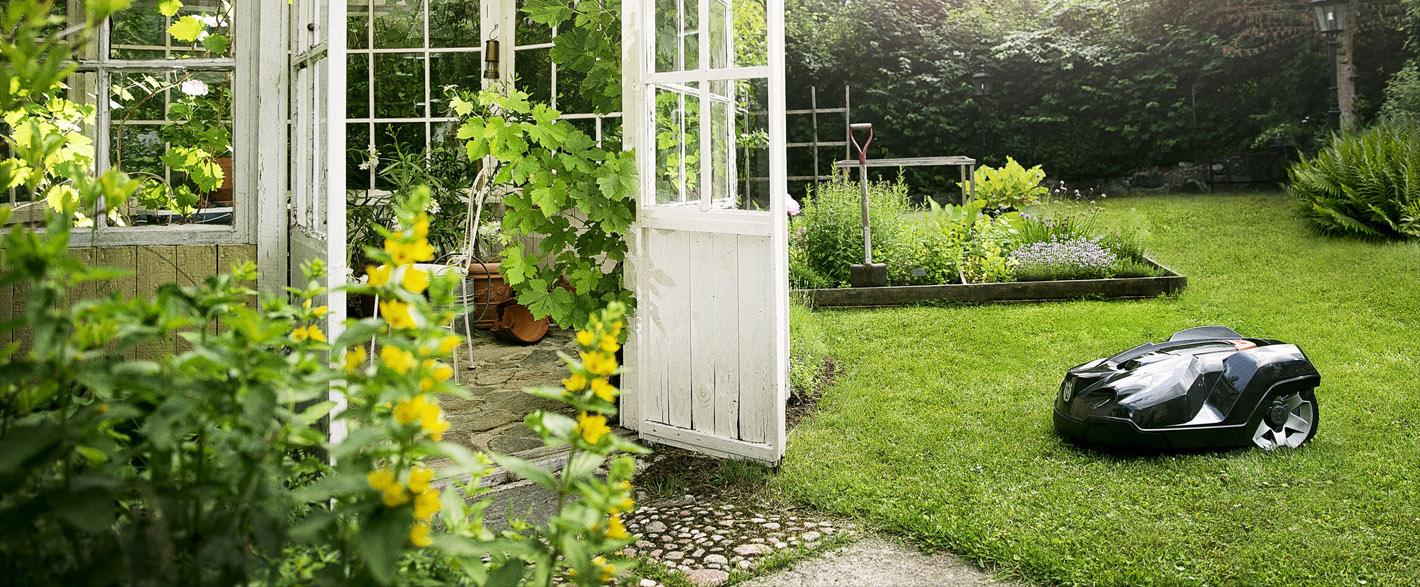 Trädgård med robotgräsklippare